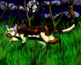 Clovertail