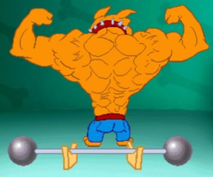 Sampson Muscle Dog