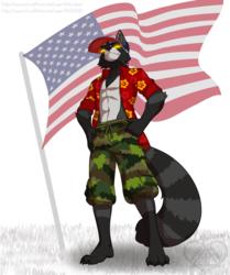 [C] American Degenerate