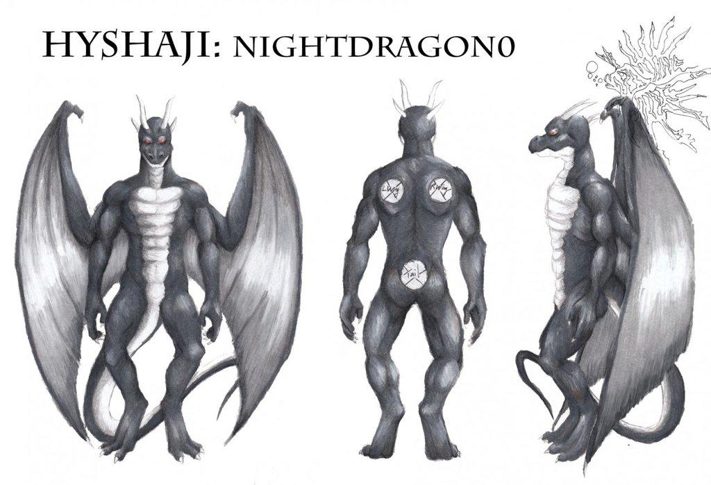 Hyshaji Nightdragon Reference Sheet by Ageaus