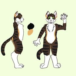 Cat fursuit concept