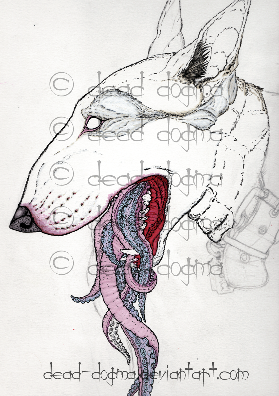 Most recent image: Anemic wip 2/28/14