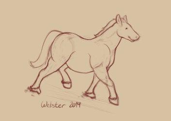 Chubby Horse