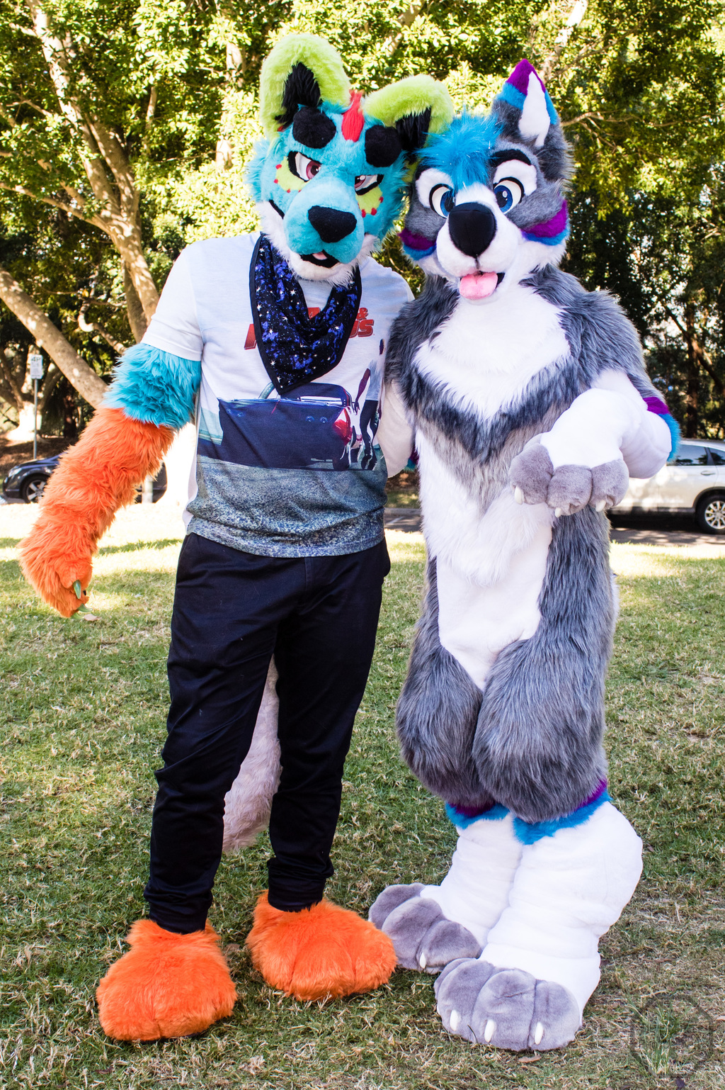 Most recent image: Mid May Meet 2017: Hyena and Husky