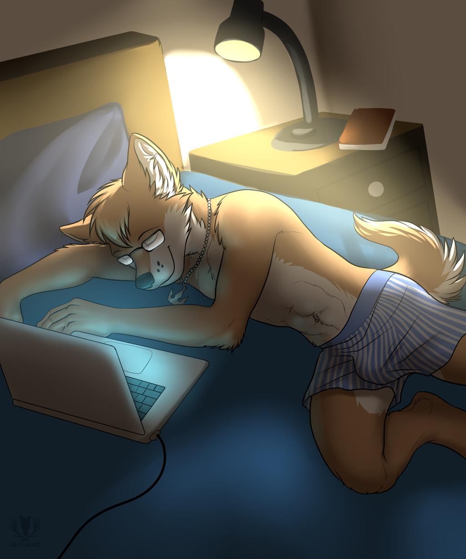 Asleep on the Computer