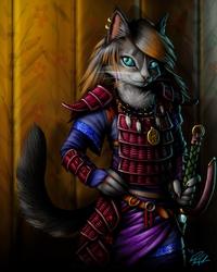 Cat in Armor