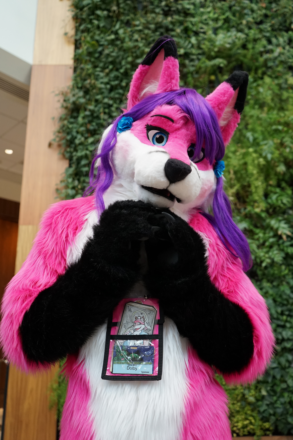 Pink and Purple~