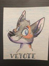 Veyote