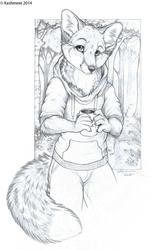A warm fox with a warm coffee (EF20)