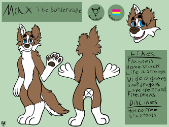 Max the border collie ref
