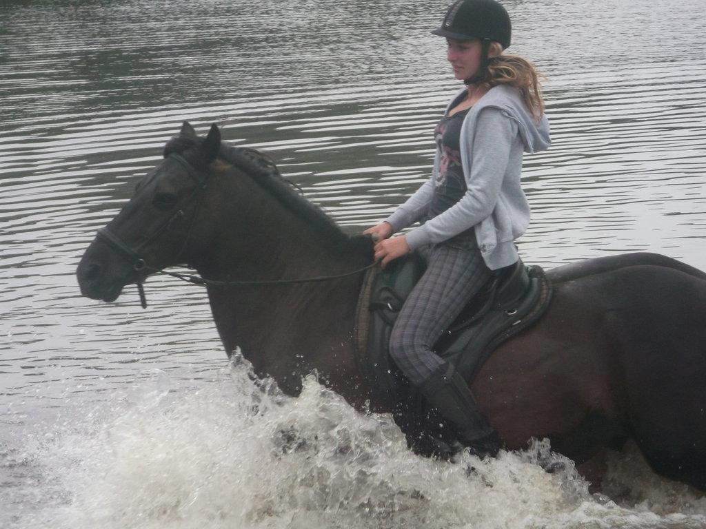 Horsey bathtime! - III
