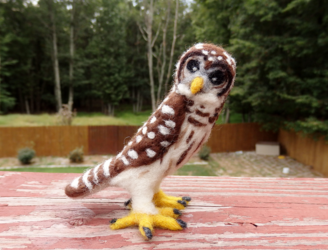 Needle Felted Barred Owl Soft Sculpture