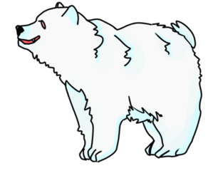 pinglar bear