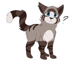 Curious Kyan