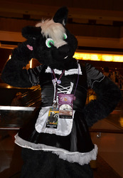 Maid For You Skunk