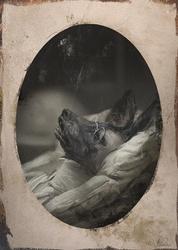 Deathbed Portrait