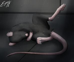 Sleepy Rat