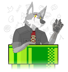 The Player With Paws