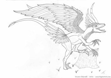 Avian Raptor Traditional Art Commission