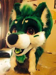Green husky!