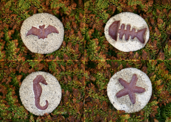 Clay Magnets: Fossil Animals