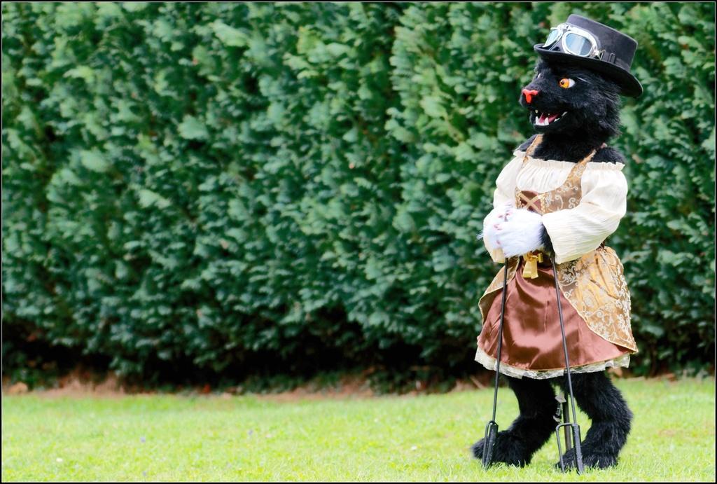 Lady Goldeneyes - dressed for EF24