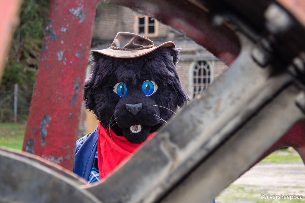 Ironfest Promo 2018: Cowboy Cat