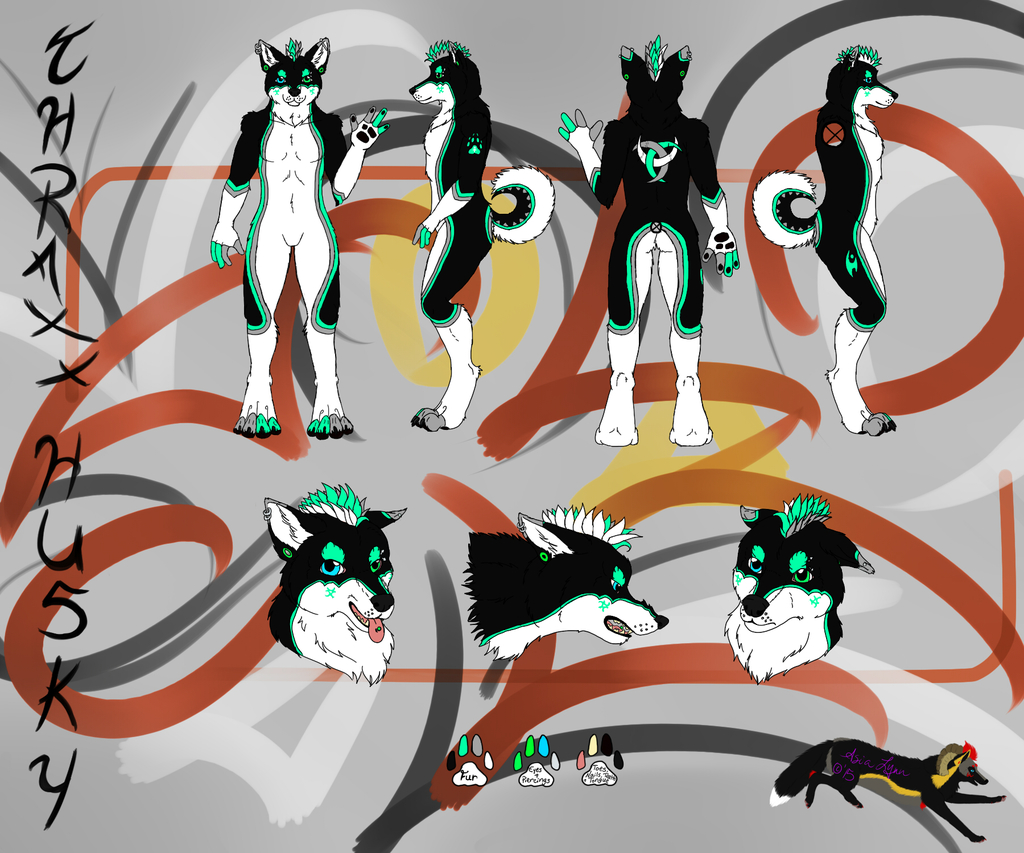 Most recent image: Thraxx Husky Reference Sheet