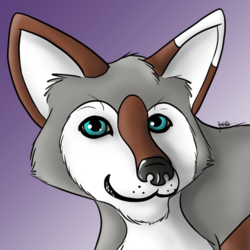 Commission: avatar for Nye Coyote