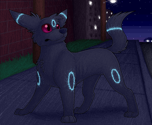 Umbreon in the City
