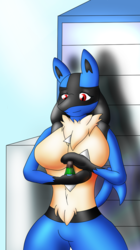 Gentle Giantess Lucario