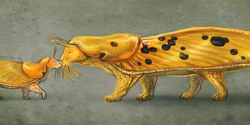 Sluguenda meets Bananacat