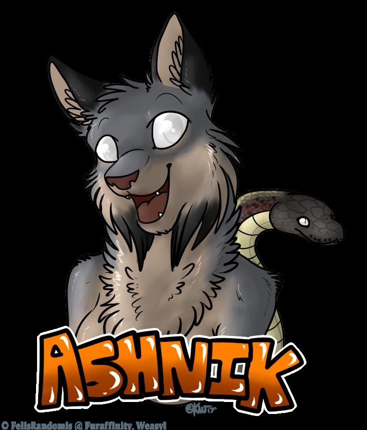 Ashnik Badge