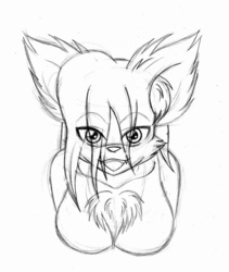 W.I.P: Kira Bust by Tanukiyasha