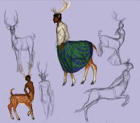 Aruna concept