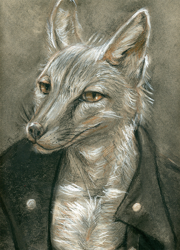 Most recent image: Fox in a Jacket