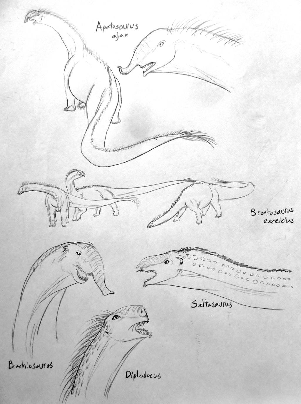 Speculative Sauropods (sketches)