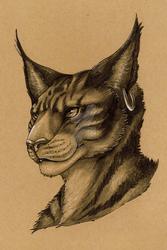 Commission #34 - Ashtara
