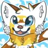 avatar of Dashuri Shoket