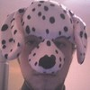 avatar of fido815
