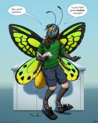 Field Guide Metamorphosis