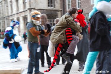 Dragonriders of York
