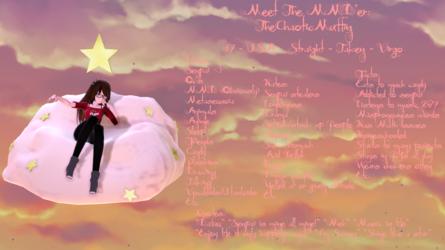 Meet The MMD'er