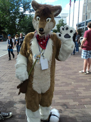 Hi there from AC 2013