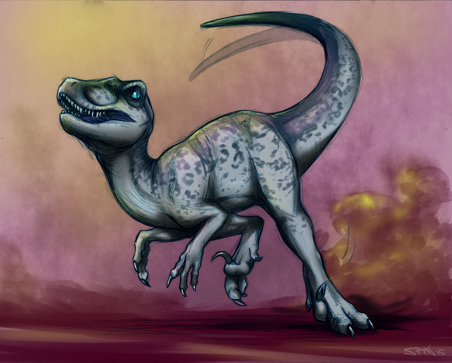 Raptor I-Spy