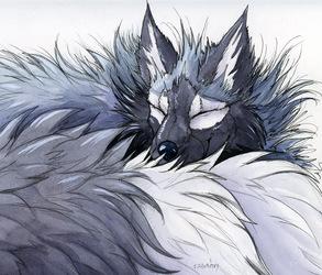 Sebastian's Winter Coat