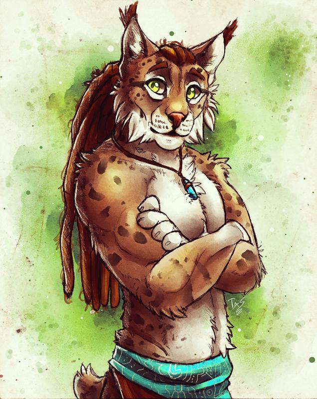 Friendly Lynx - Sketch