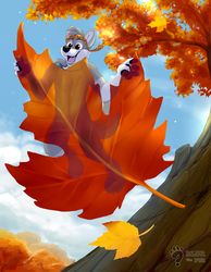 Little Fall