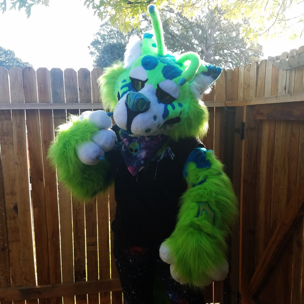 Most recent image: Spooky alien!