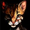 avatar of clairyx